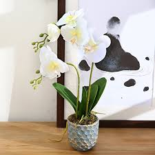 Home Decor Flower Arrangements Luyue Artificial Phalaenopsis Orchid Pot Flower Arrangement Real