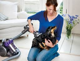 Best Pet Vaccum The 25 Best Best Pet Hair Vacuum Ideas On Pinterest Hand Vacuum