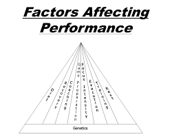 factors affecting athletic performance integrated sports performance