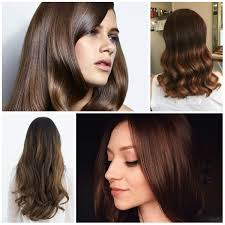 color for 2017 brunette short hair color 2017 hairsstyles co