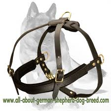 Comfortable Strap On Harness Tracking Pulling Leather Dog Harness For German Shepherd H5