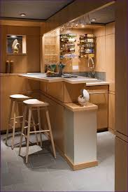 Indoor Bar Cabinet Kitchen Room Marvelous Home Bar Ideas Home Bar Kitchen Small Dry