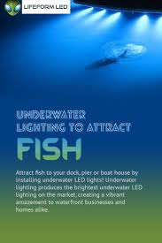 Marine Led Light Bulbs by Best 25 Underwater Led Lights Ideas On Pinterest Waterproof Tv