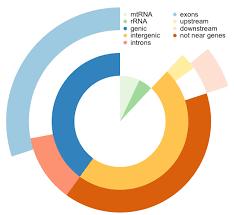 vennpier combination of venn diagram and pie chart in r r bloggers