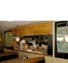 Aquarium Room Divider Examples Of Custom And Standard Aquarium Installations Freshwater