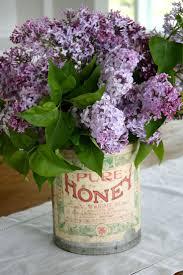 164 best purple passion images on pinterest flowers lavender