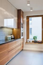 light wood kitchen cabinets with black countertops 15 trendy looking modern wood kitchens shelterness
