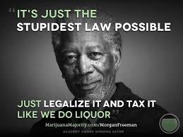 Legalize Weed Meme - 141 best celebs who support marijuana legalization images on