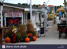 calabash nc seafood shanties decorated for thanksgiving stock