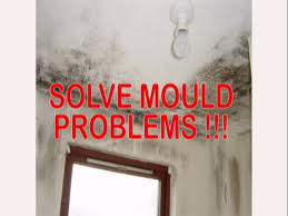 Mould Bedroom Ceiling Thermilate Warmcoat Paint Cuts Room Heat Loss Mould U0026 Damp