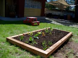 small space vegetable gardening ideas container with types of