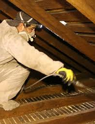 Crawl Space Cleaning San Francisco Rat Mice Rodent Cleaning Up Service Bay Area Los Angeles