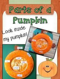 fall science what u0027s inside a pumpkin happy fall super