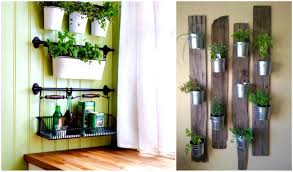 hanging herb garden kit this is amazing indoor hydroponic garden