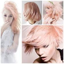 goldwell 5rr maxx haircolor pictures 91 best goldwell haircolor images on pinterest hair color hair