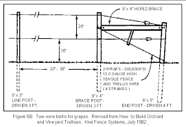How To Build Trellis Whizbang Trellis Instruction A New Ideafor Growing Grapes