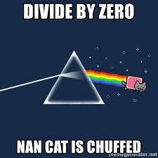 Divide By Zero Meme - divide by zero nan cat is chuffed nyan cat meme generator