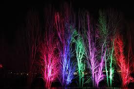 trail of lights denver twenty five best photos of holiday lights in denver westword