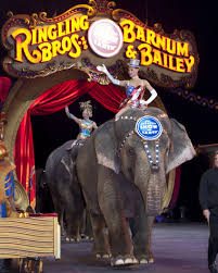 Barnes And Bailey Circus Elephants Take Center Stage For Ringling Bros And Barnum U0026 Bailey