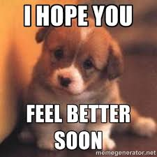Feel Better Meme - hope you feel better images hope you feel better puppy meme