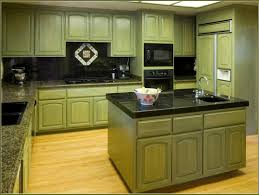 impressive corridor kitchen design ideas with sage green polished