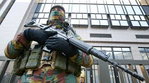 belgian sheepdog crossword clue paris suspect questioned as brussels still in lockdown the times