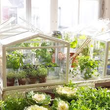 serre horticole en verre serre pour balcon toutes nos solutions marie claire