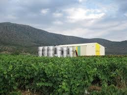 Greek Wine Cellars - greek wine cellars mantinia newwinesofgreece com
