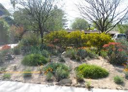 how to design a native garden australia the garden inspirations