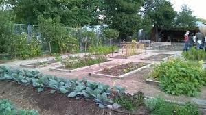 ecological gardening interior design ideas lovely to ecological