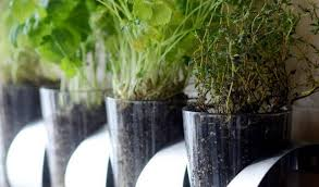 stunning kitchen wall herb garden and 15 indoor herb garden ideas