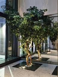 artificial trees and silk ficus tree silk