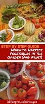 get rid of earwigs in the garden 8oz water 2t baking soda in a