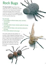 rock bugs srp reading is delicious pinterest камни