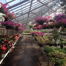 Warren Family Garden Center Pinecrest Nursery U0026 Landscaping Company Full Service Nursery