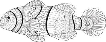 99 ideas clown fish coloring pages on emergingartspdx com