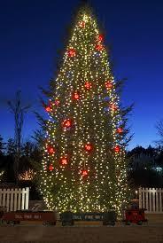Botanical Gardens Christmas Lights by 32 Best Holiday Images Images On Pinterest Holiday Images