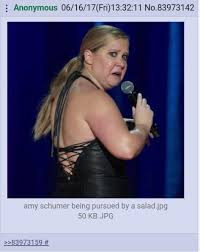 Fat Amy Memes - amy schumer vs salad amy schumer know your meme