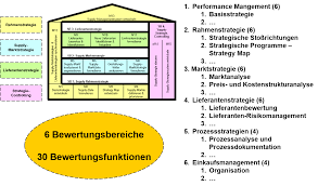 Strategy Map 15m Strategy Scan Mit Reifegradbewertung Beschaffungsstrategie