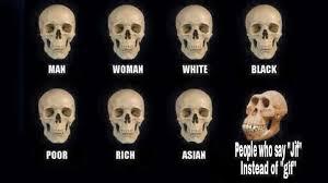 skull comparisons your meme