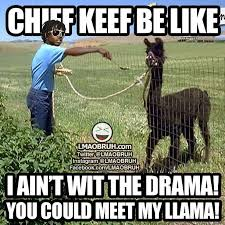 Chief Keef Memes - chief keef be like i aint with the drama you could meet my llama