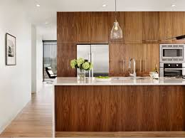 Images Of Modern Kitchen Cabinets Best 25 Walnut Kitchen Cabinets Ideas On Pinterest White
