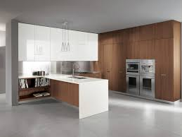 Walnut Kitchen Cabinet Walnut Kitchen Cabinets And Acrylic Upper Cabinets Kitchen