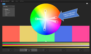 the adobe color wheel easy color palettes woodland paper