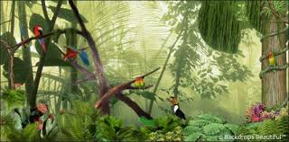 Jungle Backdrop Forest Birds Backdrop 1a Backdrops Beautiful