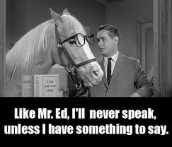 Mr Ed Meme - mr ed and the burden of being seen as a spokesman craigconnects