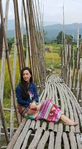 femmes plus cuisine épinglé par salita sur ช ดไทย ผ าไทย ว ถ ไทย