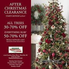 christmas tree clearance peppermint forest