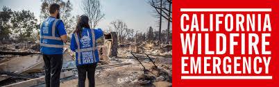 Wildfire Credit Union Loan Calculator by Islamic Relief Usa