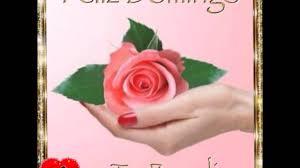 imagenes de amor para el domingo bellas imagenes para desear feliz domingo mensajes especiales youtube